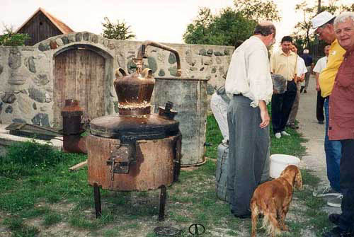 private still for the distillation of tuica a romanian plum brandy